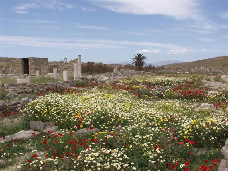Spring in Delos