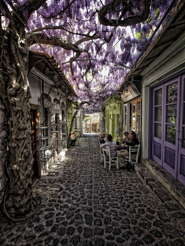 Traditional residential district of Molyvos